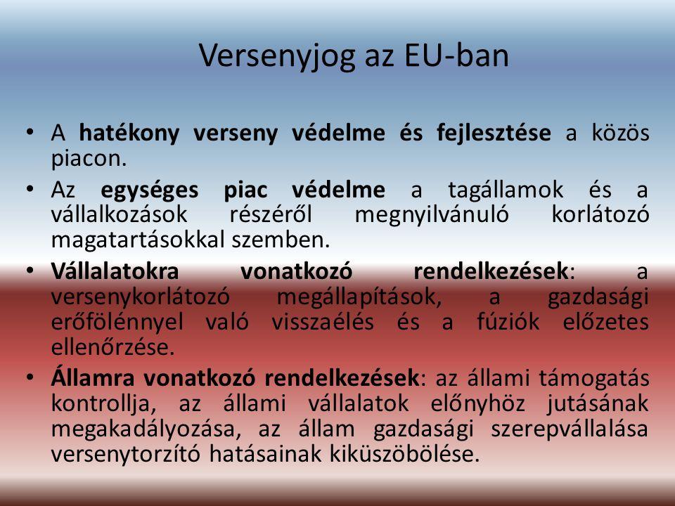 Versenyjog az EU-ban A hatékony verseny védelme és fejlesztése a közös piacon. Az egységes piac védelme a tagállamok és a vállalkozások részéről megny
