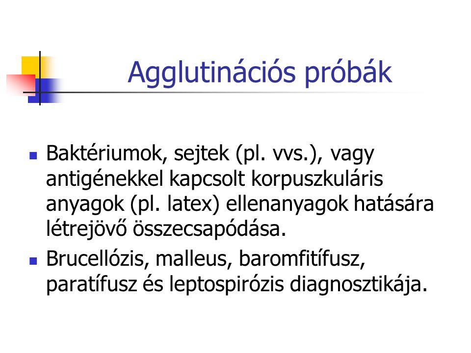 Agglutinációs próbák Baktériumok, sejtek (pl.