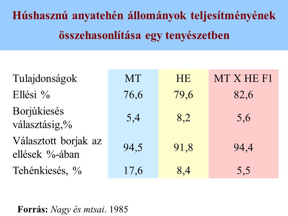 Húshasznú anyatehén állományok teljesítményének összehasonlítása egy tenyészetben TulajdonságokMTHEMT X HE F1 Ellési %76,679,682,6 Borjúkiesés választ