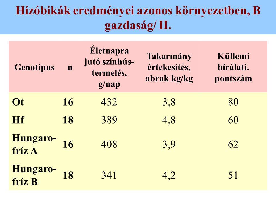 Hízóbikák eredményei azonos környezetben, B gazdaság/ II. Genotípusn Életnapra jutó színhús- termelés, g/nap Takarmány értekesítés, abrak kg/kg Küllem
