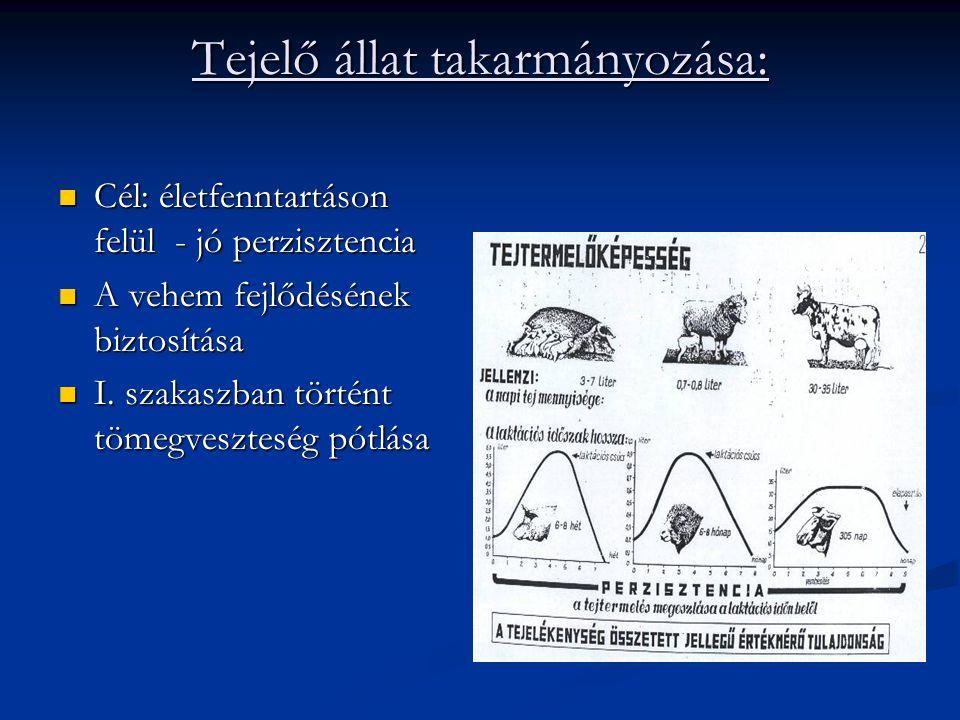 Tejelő állat takarmányozása: Cél: életfenntartáson felül - jó perzisztencia Cél: életfenntartáson felül - jó perzisztencia A vehem fejlődésének biztosítása A vehem fejlődésének biztosítása I.
