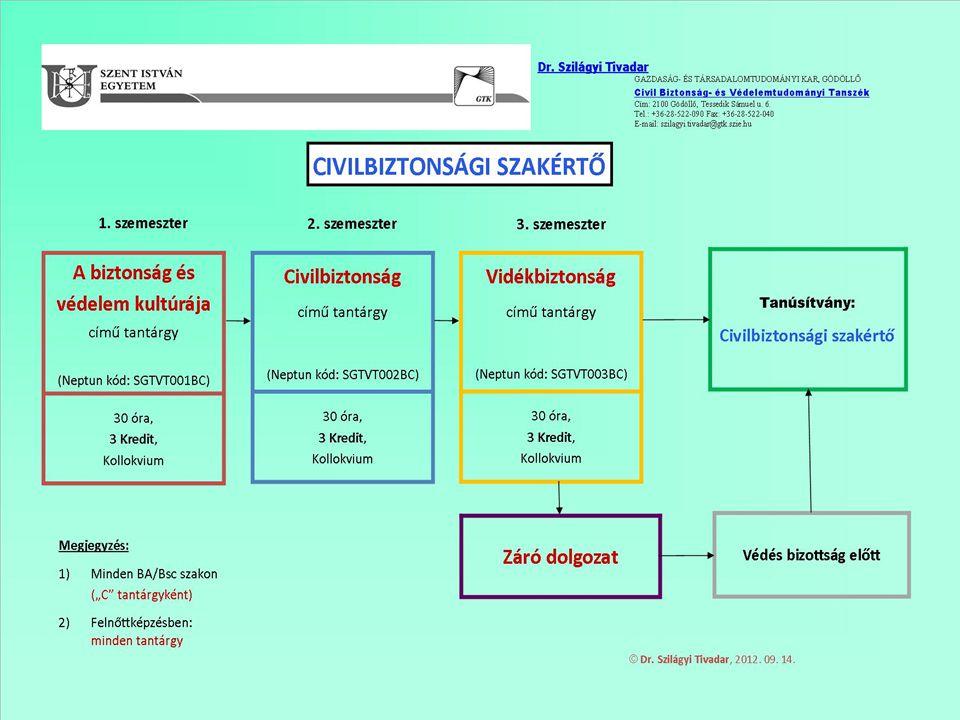 Civil Biztonság- és Védelemtudományi Tanszék 2014. 07. 23.