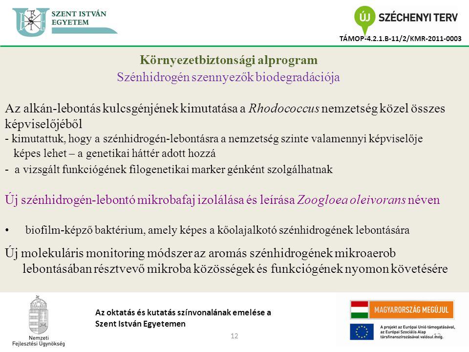 12 TÁMOP-4.2.1.B-11/2/KMR-2011-0003 Az oktatás és kutatás színvonalának emelése a Szent István Egyetemen Környezetbiztonsági alprogram Szénhidrogén szennyezők biodegradációja Az alkán-lebontás kulcsgénjének kimutatása a Rhodococcus nemzetség közel összes képviselőjéből - kimutattuk, hogy a szénhidrogén-lebontásra a nemzetség szinte valamennyi képviselője képes lehet – a genetikai háttér adott hozzá - a vizsgált funkciógének filogenetikai marker génként szolgálhatnak Új szénhidrogén-lebontó mikrobafaj izolálása és leírása Zoogloea oleivorans néven biofilm-képző baktérium, amely képes a kőolajalkotó szénhidrogének lebontására Új molekuláris monitoring módszer az aromás szénhidrogének mikroaerob lebontásában résztvevő mikroba közösségek és funkciógének nyomon követésére