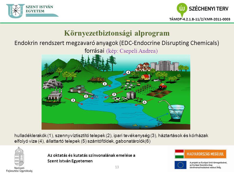 13 TÁMOP-4.2.1.B-11/2/KMR-2011-0003 Az oktatás és kutatás színvonalának emelése a Szent István Egyetemen Környezetbiztonsági alprogram Endokrin rendszert megzavaró anyagok (EDC-Endocrine Disrupting Chemicals) forrásai (kép: Csepeli Andrea) hulladéklerakók (1), szennyvíztisztító telepek (2), ipari tevékenység (3), háztartások és kórházak elfolyó vize (4), állattartó telepek (5) szántóföldek, gabonatárolók(6)