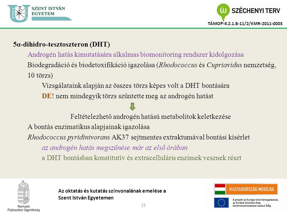 15 TÁMOP-4.2.1.B-11/2/KMR-2011-0003 Az oktatás és kutatás színvonalának emelése a Szent István Egyetemen 5α-dihidro-tesztoszteron (DHT) Androgén hatás kimutatására alkalmas biomonitoring rendszer kidolgozása Biodegradáció és biodetoxifikáció igazolása (Rhodococcus és Cupriavidus nemzetség, 10 törzs) Vizsgálataink alapján az összes törzs képes volt a DHT bontására DE.