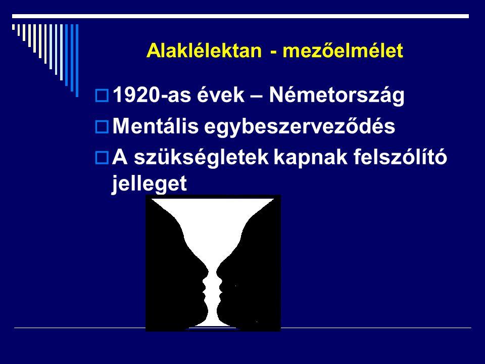 Alaklélektan - mezőelmélet 11920-as évek – Németország MMentális egybeszerveződés AA szükségletek kapnak felszólító jelleget
