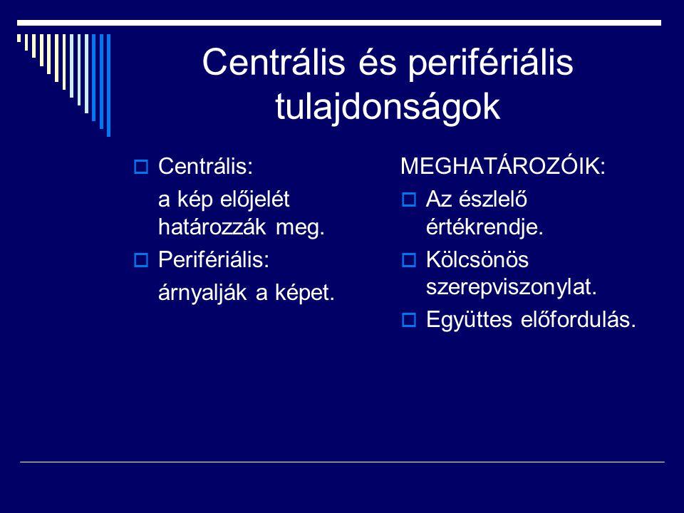 Centrális és perifériális tulajdonságok  Centrális: a kép előjelét határozzák meg.  Perifériális: árnyalják a képet. MEGHATÁROZÓIK:  Az észlelő ért