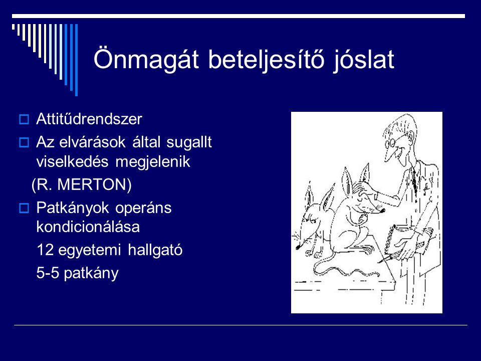 Önmagát beteljesítő jóslat  Attitűdrendszer  Az elvárások által sugallt viselkedés megjelenik (R. MERTON)  Patkányok operáns kondicionálása 12 egye