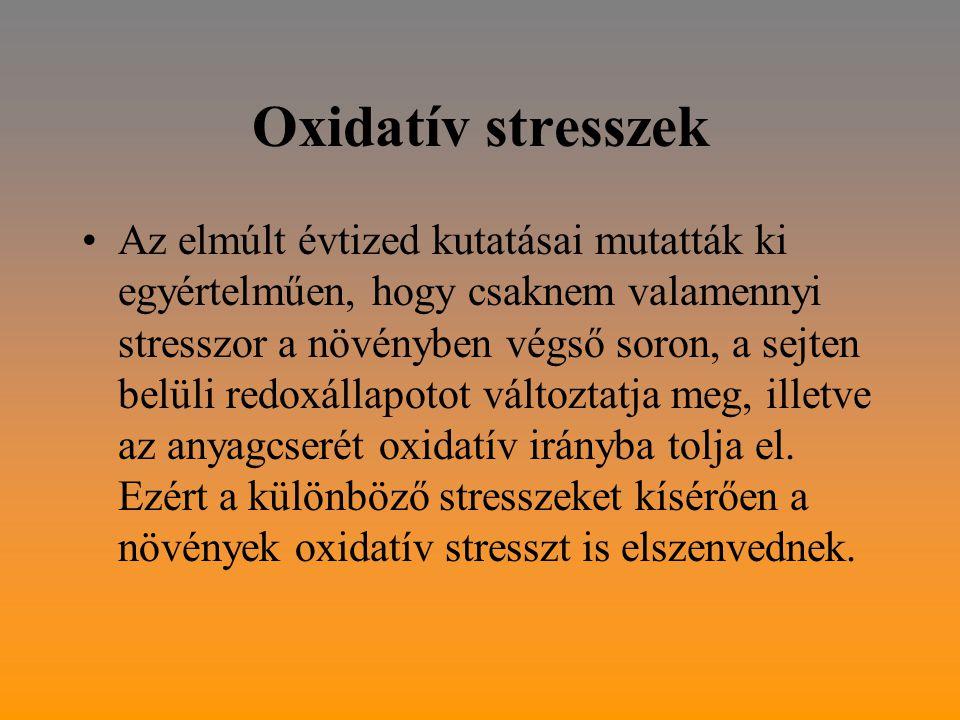 Oxidatív stresszek Az elmúlt évtized kutatásai mutatták ki egyértelműen, hogy csaknem valamennyi stresszor a növényben végső soron, a sejten belüli redoxállapotot változtatja meg, illetve az anyagcserét oxidatív irányba tolja el.