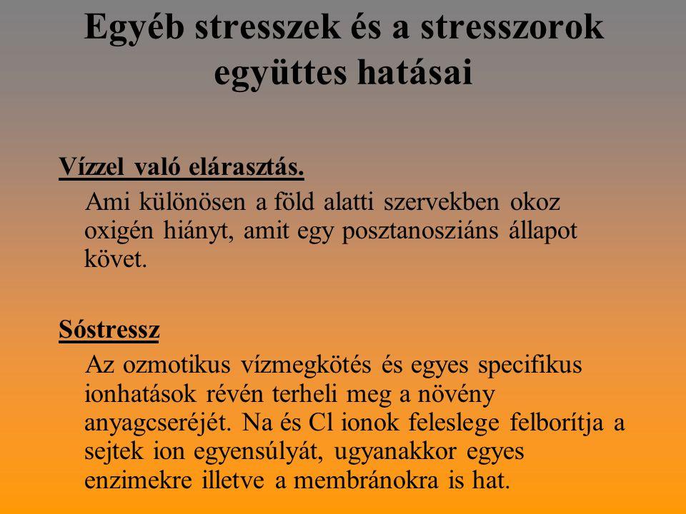 Egyéb stresszek és a stresszorok együttes hatásai Vízzel való elárasztás.