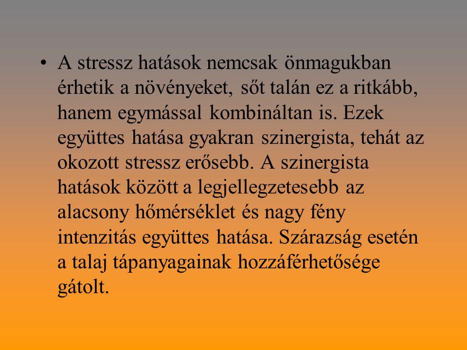 A stressz hatások nemcsak önmagukban érhetik a növényeket, sőt talán ez a ritkább, hanem egymással kombináltan is.