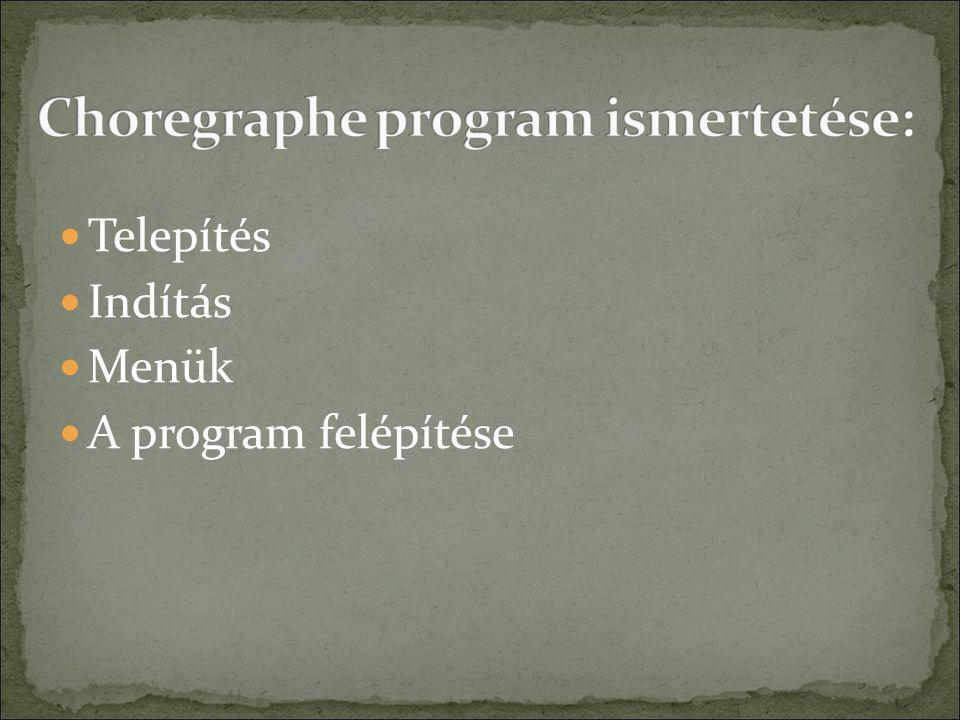 Telepítés Indítás Menük A program felépítése