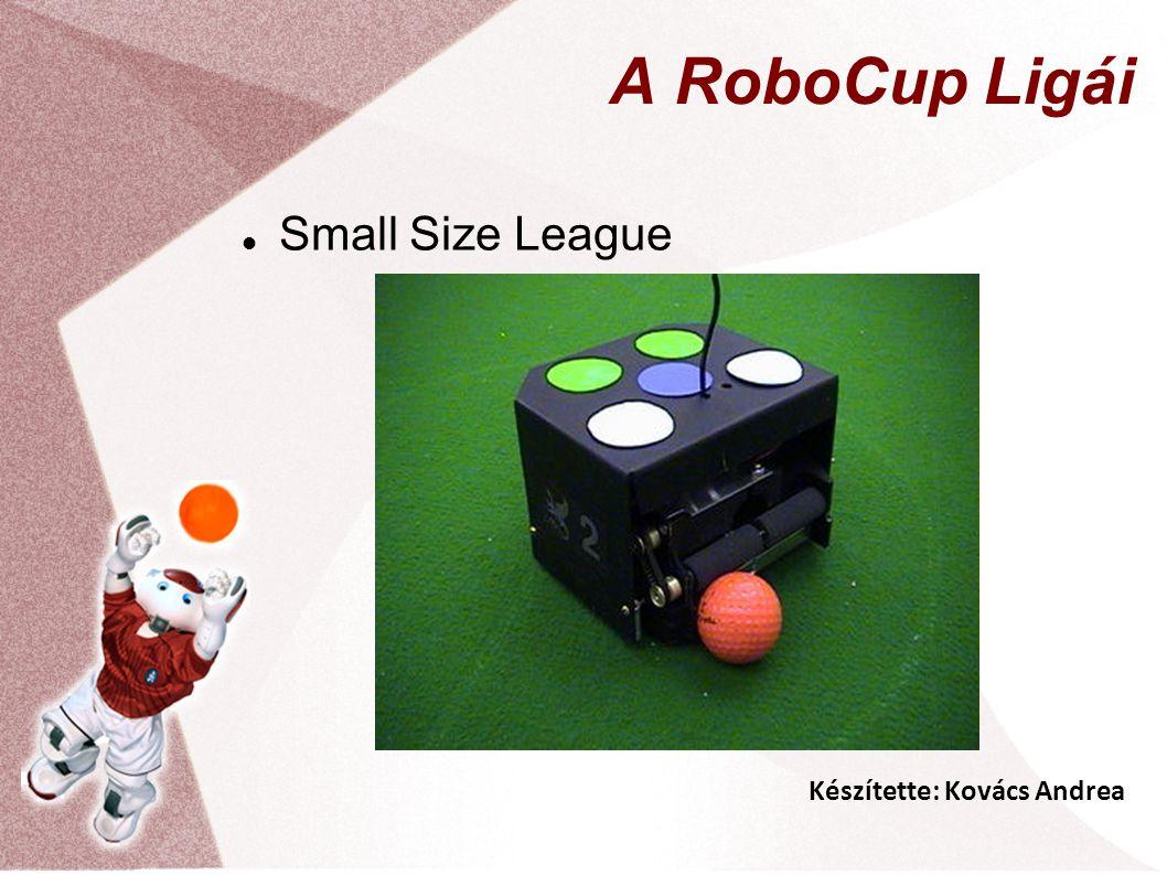 Készítette: Kovács Andrea A RoboCup Ligái Small Size League