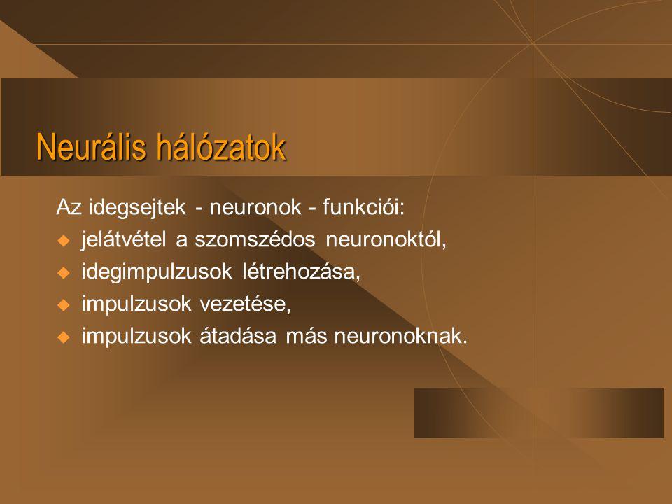 Neurális hálózatok Az idegsejtek - neuronok - funkciói:  jelátvétel a szomszédos neuronoktól,  idegimpulzusok létrehozása,  impulzusok vezetése, 
