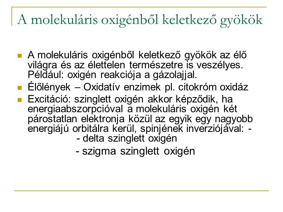 A molekuláris oxigénből keletkező gyökök A molekuláris oxigénből keletkező gyökök az élő világra és az élettelen természetre is veszélyes. Például: ox