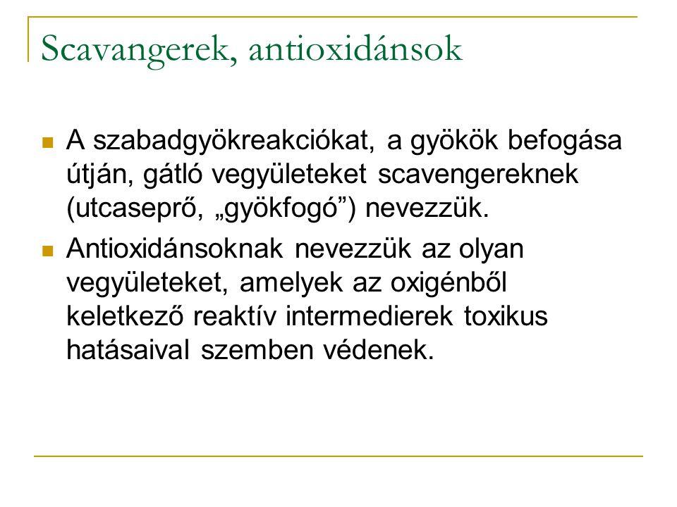 """Scavangerek, antioxidánsok A szabadgyökreakciókat, a gyökök befogása útján, gátló vegyületeket scavengereknek (utcaseprő, """"gyökfogó"""") nevezzük. Antiox"""