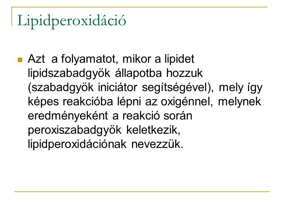 Lipidperoxidáció Azt a folyamatot, mikor a lipidet lipidszabadgyök állapotba hozzuk (szabadgyök iniciátor segítségével), mely így képes reakcióba lépn