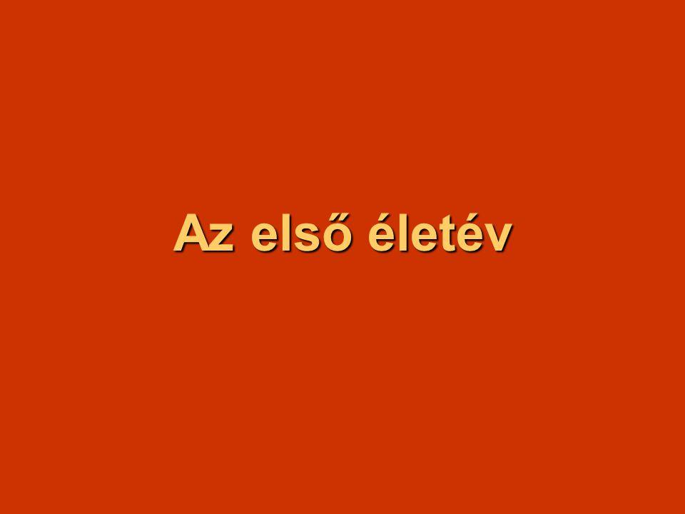 Kötelező irodalom Szemelvények a fejlődéslélektan köréből: A születés előtti életidő pszichológiája 51 - 63.