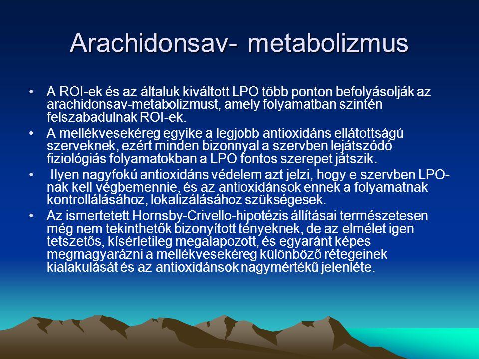Arachidonsav- metabolizmus A ROI-ek és az általuk kiváltott LPO több ponton befolyásolják az arachidonsav-metabolizmust, amely folyamatban szintén felszabadulnak ROI-ek.
