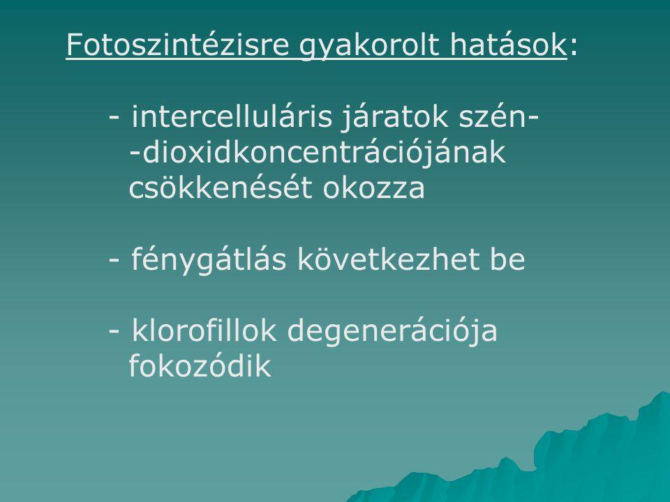 Fotoszintézisre gyakorolt hatások: - intercelluláris járatok szén- -dioxidkoncentrációjának csökkenését okozza - fénygátlás következhet be - klorofillok degenerációja fokozódik