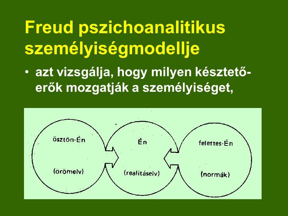 Freud pszichoanalitikus személyiségmodellje azt vizsgálja, hogy milyen késztető- erők mozgatják a személyiséget,