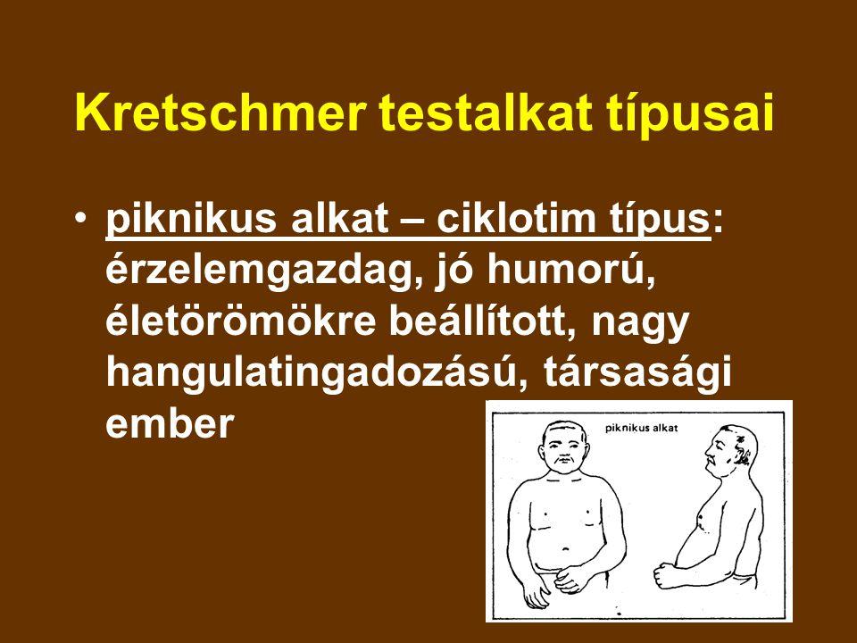 Kretschmer testalkat típusai piknikus alkat – ciklotim típus: érzelemgazdag, jó humorú, életörömökre beállított, nagy hangulatingadozású, társasági em