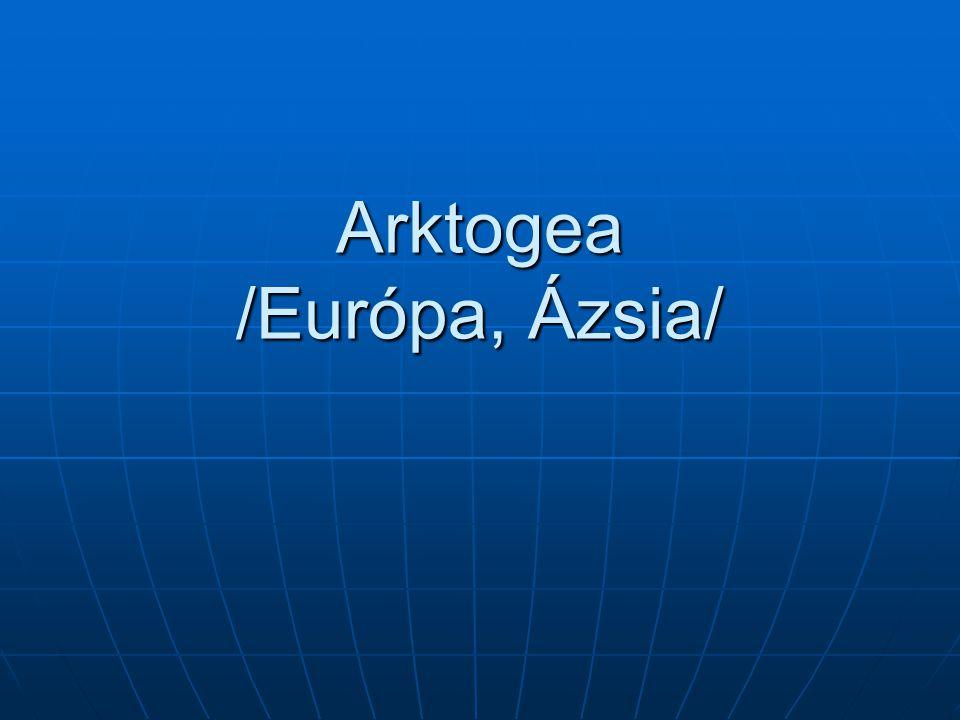 Arktogea Európa Európa Ázsia Ázsia Afrika Afrika Észak-Amerika Észak-Amerika Északi-sarkköri vidék Északi-sarkköri vidék