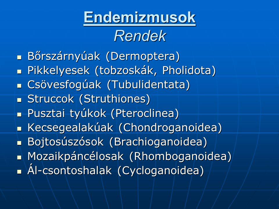 Endemizmusok Rendek Bőrszárnyúak (Dermoptera) Bőrszárnyúak (Dermoptera) Pikkelyesek (tobzoskák, Pholidota) Pikkelyesek (tobzoskák, Pholidota) Csövesfo