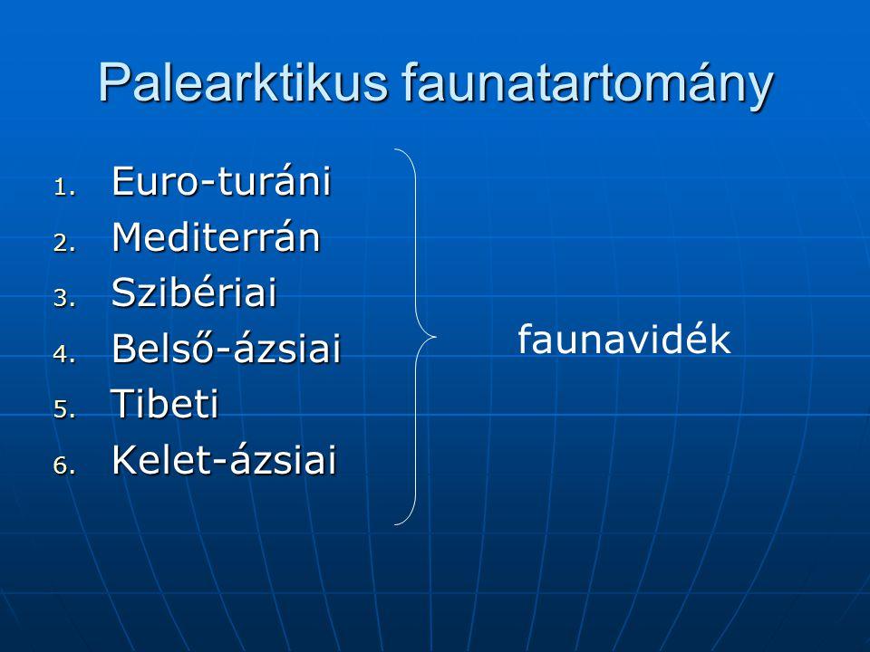 Palearktikus faunatartomány 1. Euro-turáni 2. Mediterrán 3. Szibériai 4. Belső-ázsiai 5. Tibeti 6. Kelet-ázsiai faunavidék