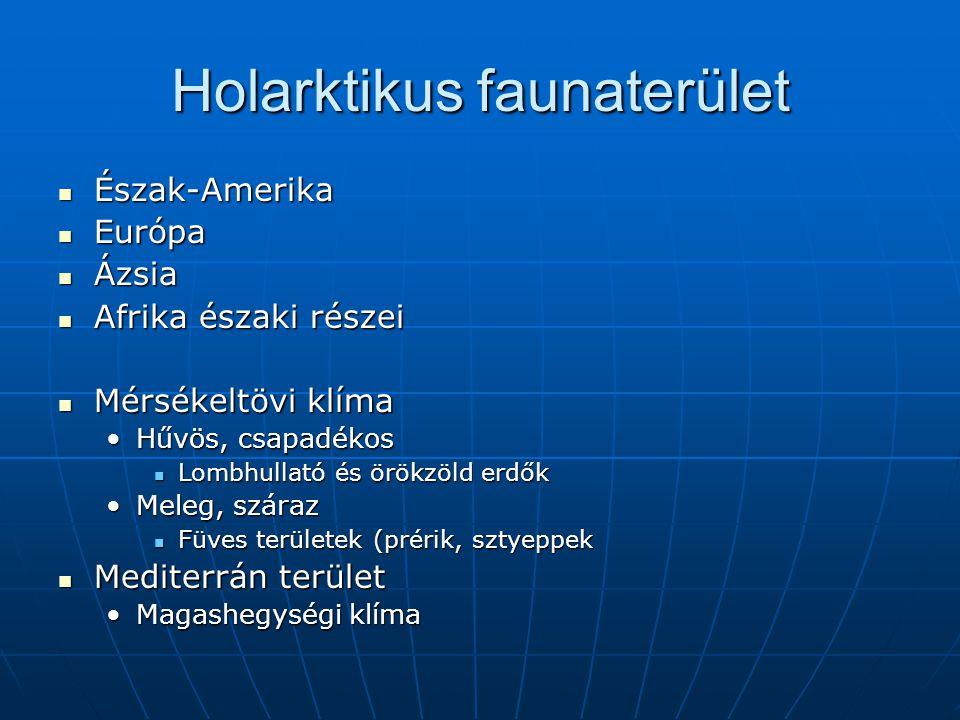 Holarktikus faunaterület Észak-Amerika Észak-Amerika Európa Európa Ázsia Ázsia Afrika északi részei Afrika északi részei Mérsékeltövi klíma Mérsékeltö