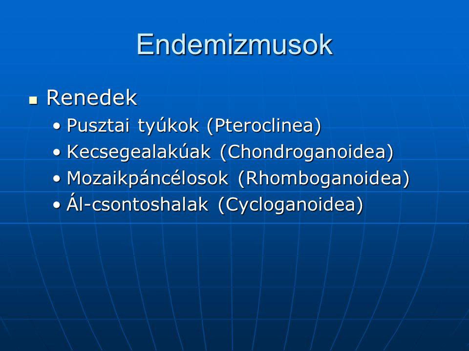 Endemizmusok Renedek Renedek Pusztai tyúkok (Pteroclinea)Pusztai tyúkok (Pteroclinea) Kecsegealakúak (Chondroganoidea)Kecsegealakúak (Chondroganoidea)