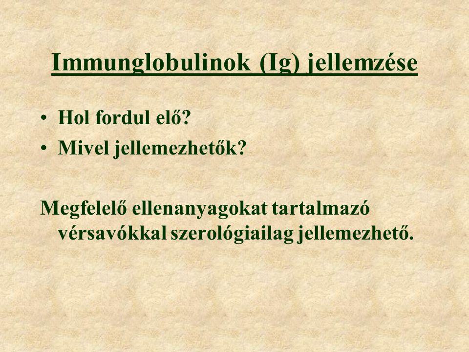 Immunglobulinok (Ig) jellemzése Hol fordul elő.Mivel jellemezhetők.