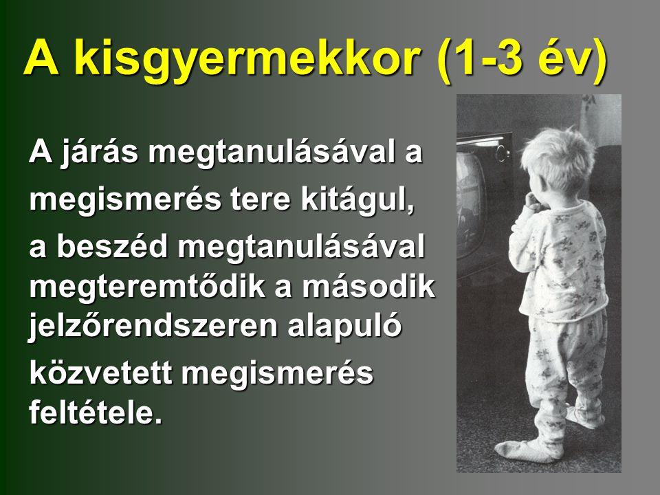 A kisgyermekkor (1-3 év) A járás megtanulásával a megismerés tere kitágul, a beszéd megtanulásával megteremtődik a második jelzőrendszeren alapuló köz