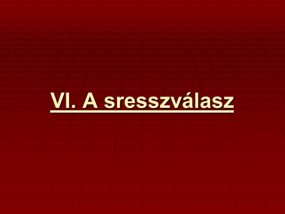 VI. A sresszválasz
