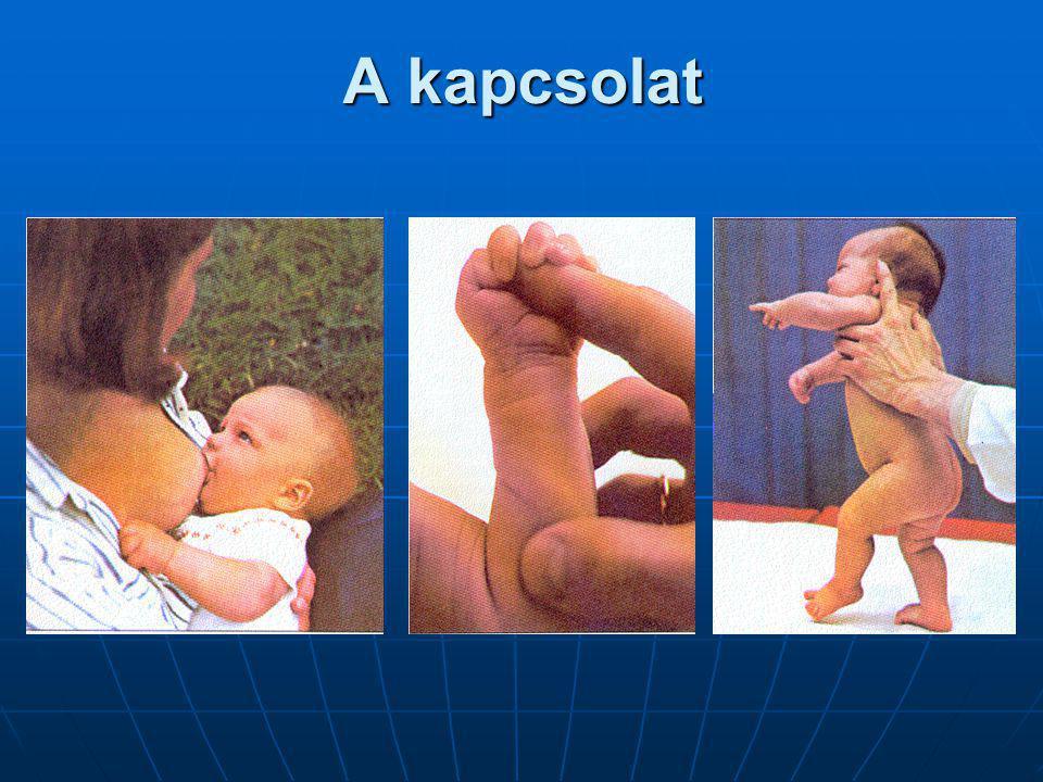 Szocializációs funkciók: MODELLNYÚJTÁS A család a mintavétel első bázisa.