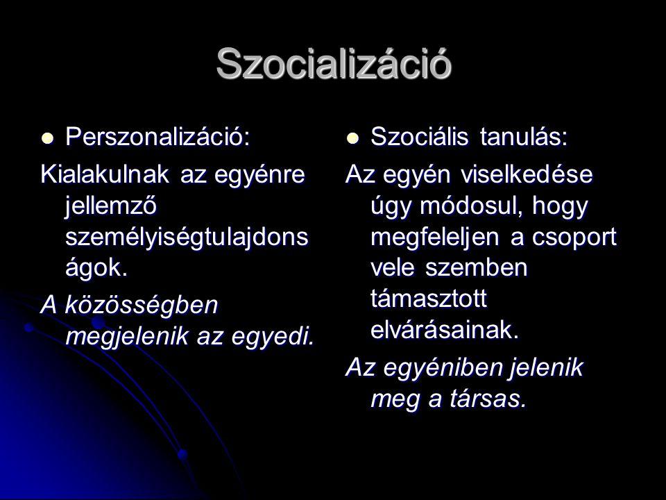 Szocializáció Perszonalizáció: Perszonalizáció: Kialakulnak az egyénre jellemző személyiségtulajdons ágok.