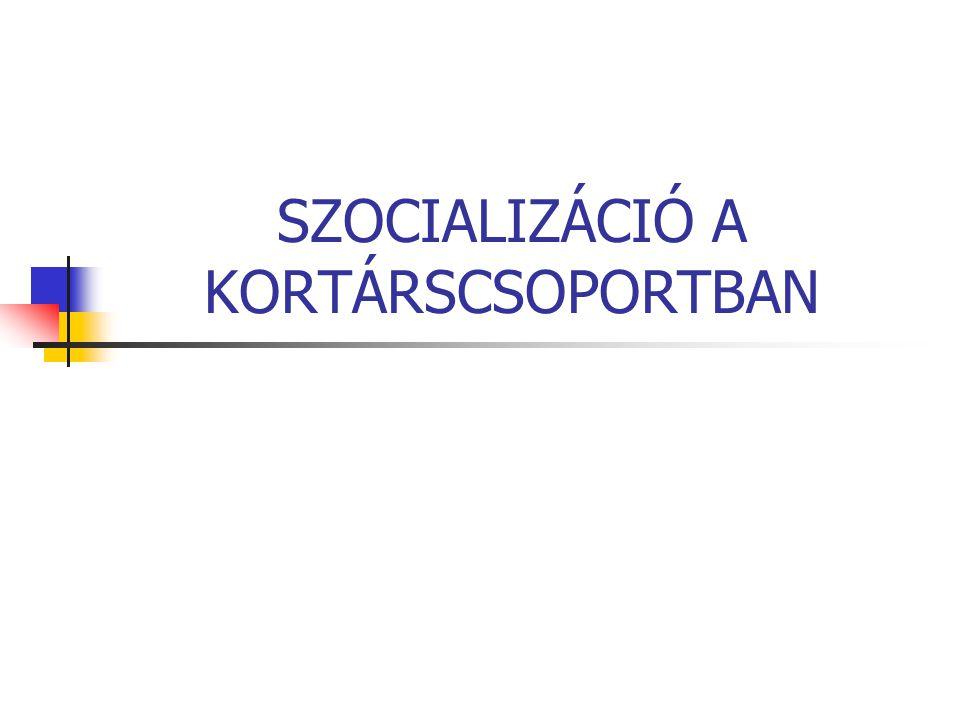 Csoport fogalma A csoport az egyén és a társadalom közötti kölcsönhatás szerveződési mezője.