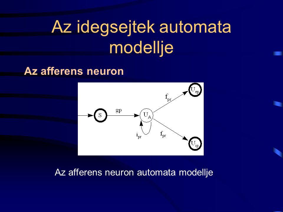 Az idegsejtek automata modellje Az afferens neuron Az afferens neuron automata modellje