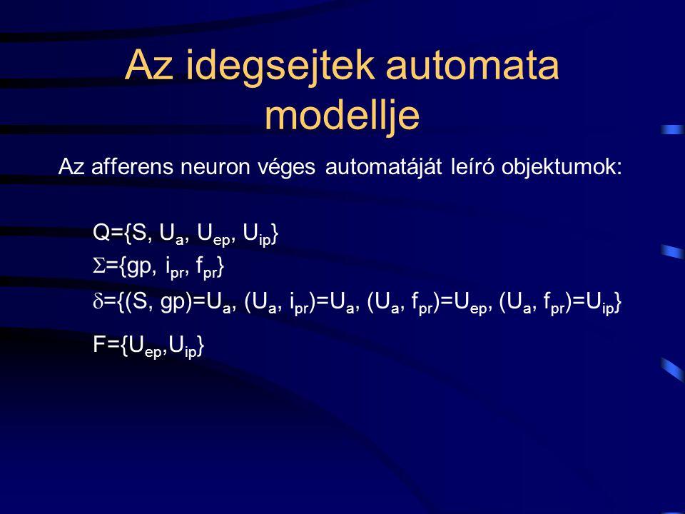 Az idegsejtek automata modellje Az afferens neuron véges automatáját leíró objektumok: Q={S, U a, U ep, U ip }  ={gp, i pr, f pr }  ={(S, gp)=U a, (U a, i pr )=U a, (U a, f pr )=U ep, (U a, f pr )=U ip } F={U ep,U ip }
