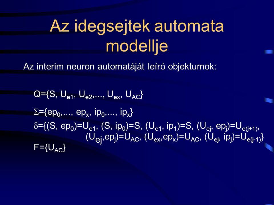 Az idegsejtek automata modellje Az interim neuron automatáját leíró objektumok: Q={S, U e1, U e2,..., U ex, U AC }  ={ep 0,..., ep x, ip 0,..., ip x }  ={(S, ep 0 )=U e1, (S, ip 0 )=S, (U e1, ip 1 )=S, (U ej, ep j )=U e(j+1), (U ej,ep j )=U AC, (U ex,ep x )=U AC, (U ej, ip j )=U e(j-1) } F={U AC }