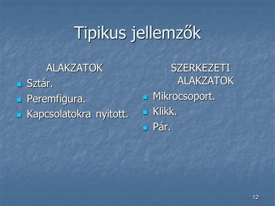 12 Tipikus jellemzők ALAKZATOK Sztár. Sztár. Peremfigura. Peremfigura. Kapcsolatokra nyitott. Kapcsolatokra nyitott. SZERKEZETI ALAKZATOK Mikrocsoport
