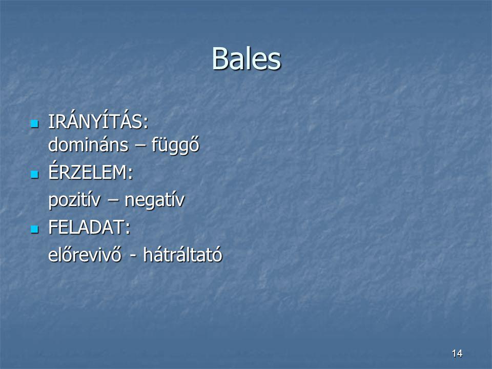 14 Bales IRÁNYÍTÁS: domináns – függő IRÁNYÍTÁS: domináns – függő ÉRZELEM: ÉRZELEM: pozitív – negatív FELADAT: FELADAT: előrevivő - hátráltató
