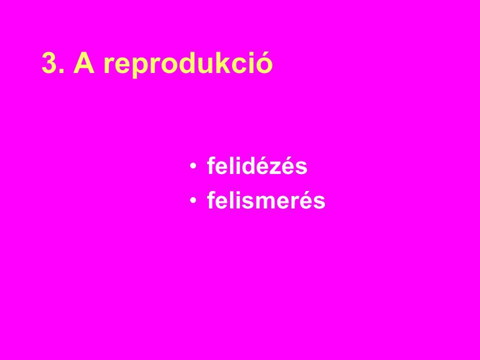 3. A reprodukció felidézés felismerés