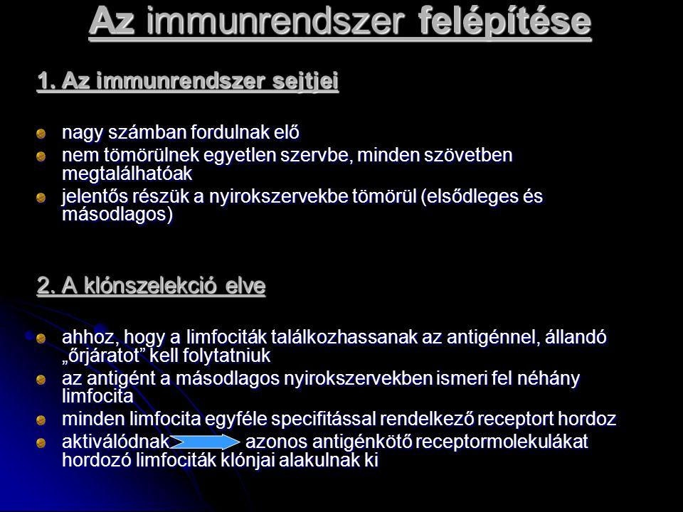 Az immunrendszer felépítése 1.