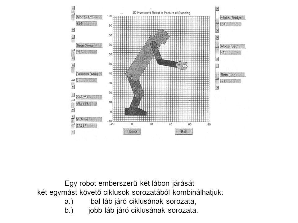 Ilyen álló helyzetben lévő humanoid robottal, ha cselekvést akarunk végeztetni, akkor a jobb láb, a test és a jobb kar/kéz-nek kell alkotni egyszerű nyílt kinematikai láncot ahhoz, hogy a mozgást tanulmányozhassuk.