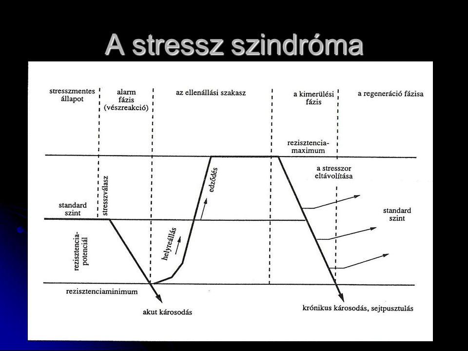 A stressz szindróma