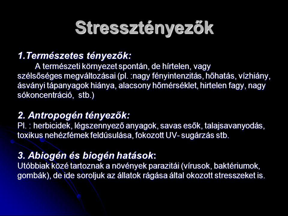 A stresszhatás intenzitása 1.Gyenge stressz: - aktiválhatja a sejtanyagcserét, - aktiválhatja a sejtanyagcserét, - fokozhatja a növény fiziológiai aktivitását - fokozhatja a növény fiziológiai aktivitását - nem okoz semmiféle károsodást még hosszabb időtartamon át haladva sem - nem okoz semmiféle károsodást még hosszabb időtartamon át haladva sem - ilyen hatása van számos növekedésgátlónak és anyagcsereinhibitornak, melyek kis koncentrációban serkentő hatásúak.