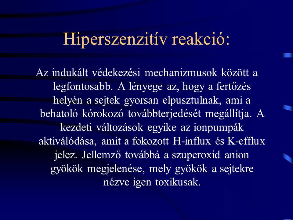 Hiperszenzitív reakció: Az indukált védekezési mechanizmusok között a legfontosabb.