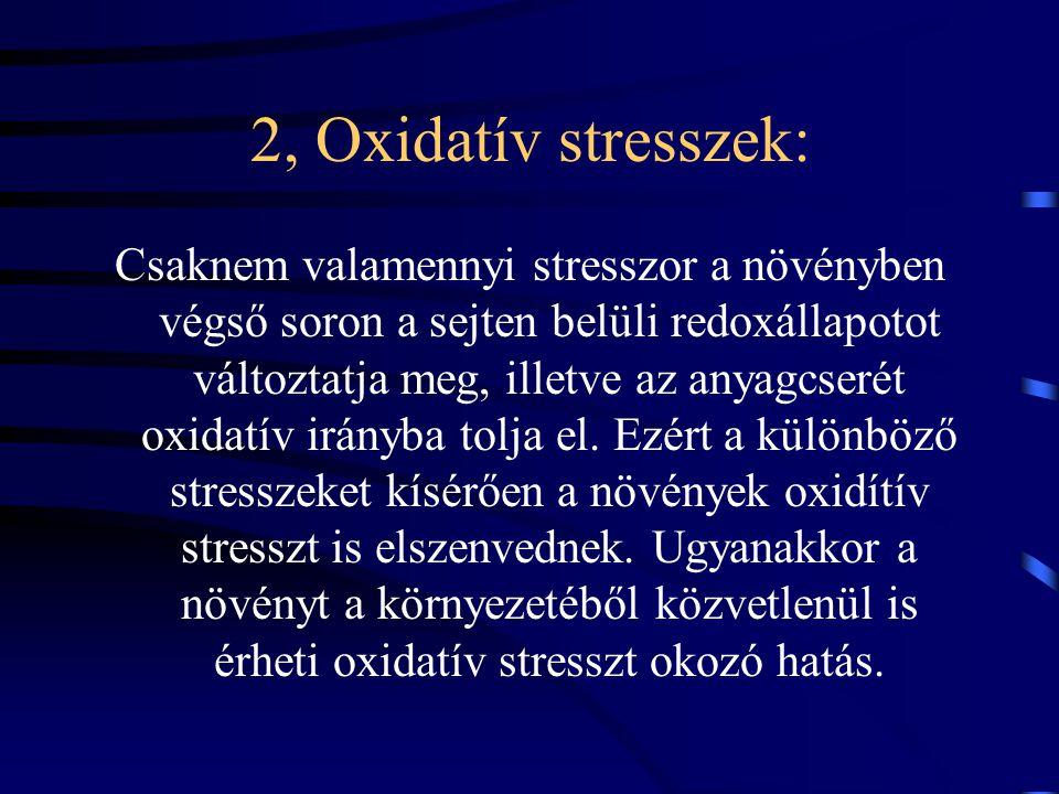 2, Oxidatív stresszek: Csaknem valamennyi stresszor a növényben végső soron a sejten belüli redoxállapotot változtatja meg, illetve az anyagcserét oxidatív irányba tolja el.