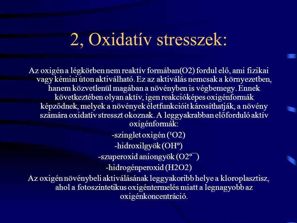 2, Oxidatív stresszek: Az oxigén a légkörben nem reaktív formában(O2) fordul elő, ami fizikai vagy kémiai úton aktiválható.